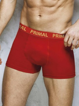 Трусы мужские Primal PRIMAL B1660 boxer
